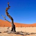 Bohnaus-Namibia-01