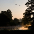 Wörlitzer See - Sonnenaufgang