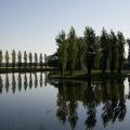 Wörlitzer See - früher Vormittag