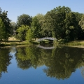 Wörlitzer See - später Vormittag