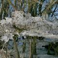 Eisgirlanden-02-Halder