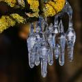 Eisgirlanden-06-Klinkel