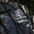 Eisgirlanden-12-Schmid-Pfaehler