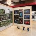 Herbstausstellung-2019_08