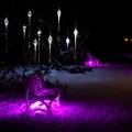 Licht d. Nacht Pl 2 BKoob