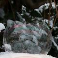 Seifenblasen-12-Bärbel Glombik-Wörz