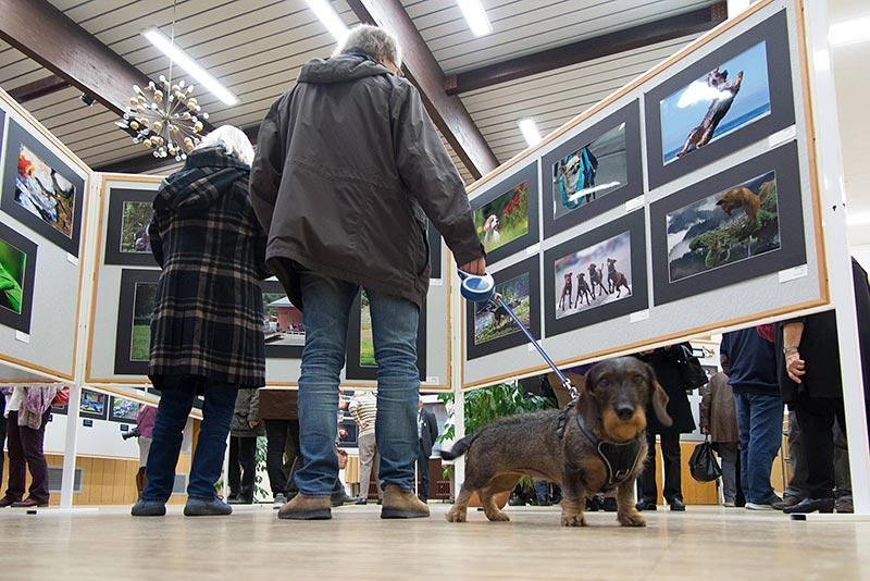 """Ausstellungswettbewerb """"Tierisch gut"""": Zwei- und vierbeinige Gäste. Foto (c) Rudolf Dölling"""