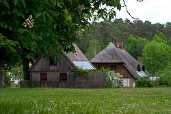 Müritz Nationalpark. Foto: Wirk