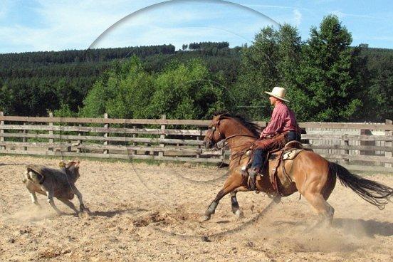 Christa Bohnaus: Weekend-Cowboys