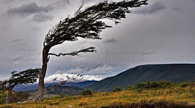 Christa Bohnaus: Von Patagonien und Feuerland