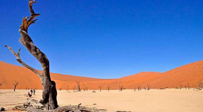 Christa Bohnaus: Namibia, wo die Natur unendlich ist